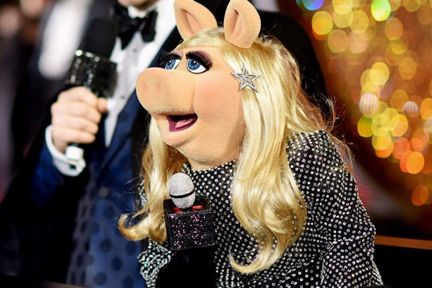 Invenio Flory- Miss Piggy - Saint Laurent - 2017