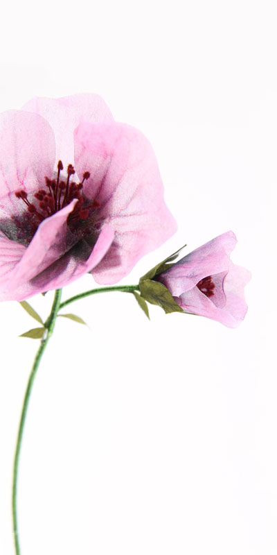 Invenio Flory - Flower companant -L'oreal prestige- 2018- Objet